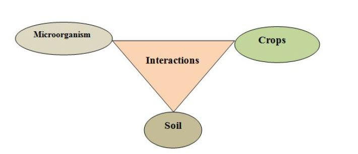 different ways of managing a soil.