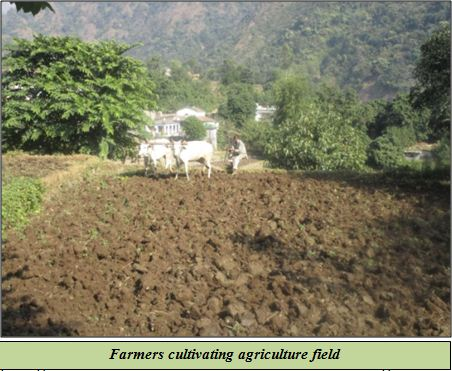 Farmers cultivating agriculture field in hills
