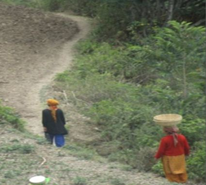 Women busy in Agriculture works in hills