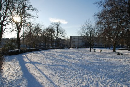 winter-in-het-park-028