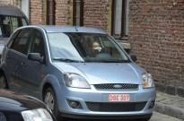 stadsloop-2013-003