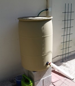 Water Wise after the rain barrel installation