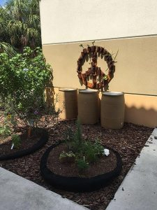 Water Wise Landscape Solutions, Beachside Montessori School teaching garden rain barrels and peace sign