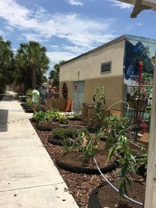 Water Wise Landscape Solutions, Beachside Montessori School teaching garden solar hookup setup