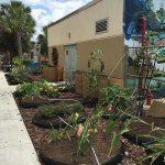Water Wise Landscape Solutions, Beachside Montessori School teaching garden solar hookup