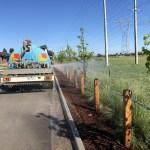 Watercart Watson Equipment Hire