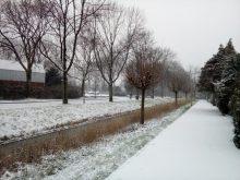 Sneeuw maakte het bezorgen niet makkelijker 1