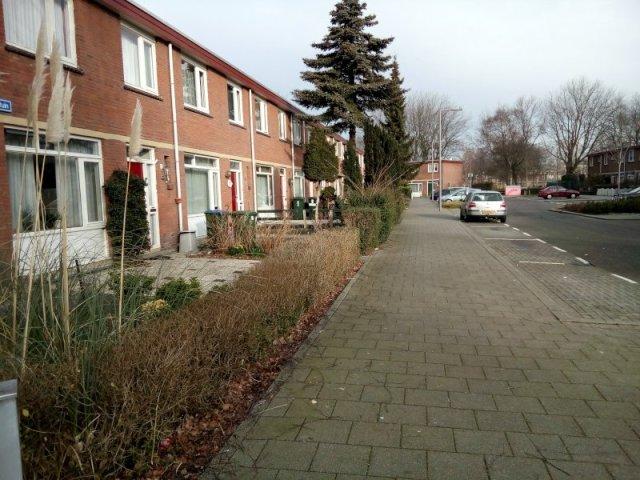 Renovatie in tuinenhoven gaat door
