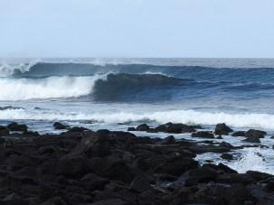 Tonga Reef