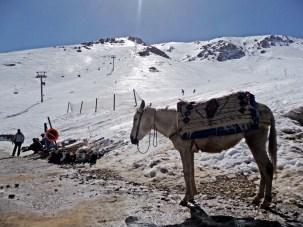 Skigebiet Oukaïmeden