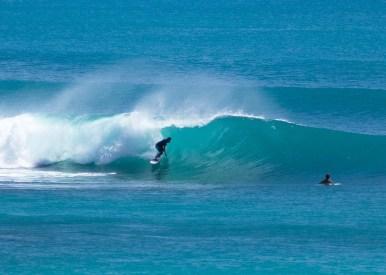 Surf pdang