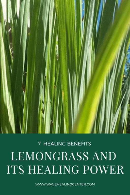 Lemongrass and its healing power