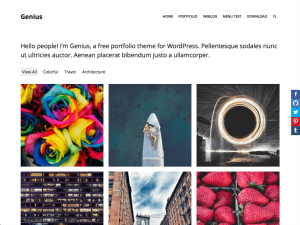 genius-free-wordpress-theme