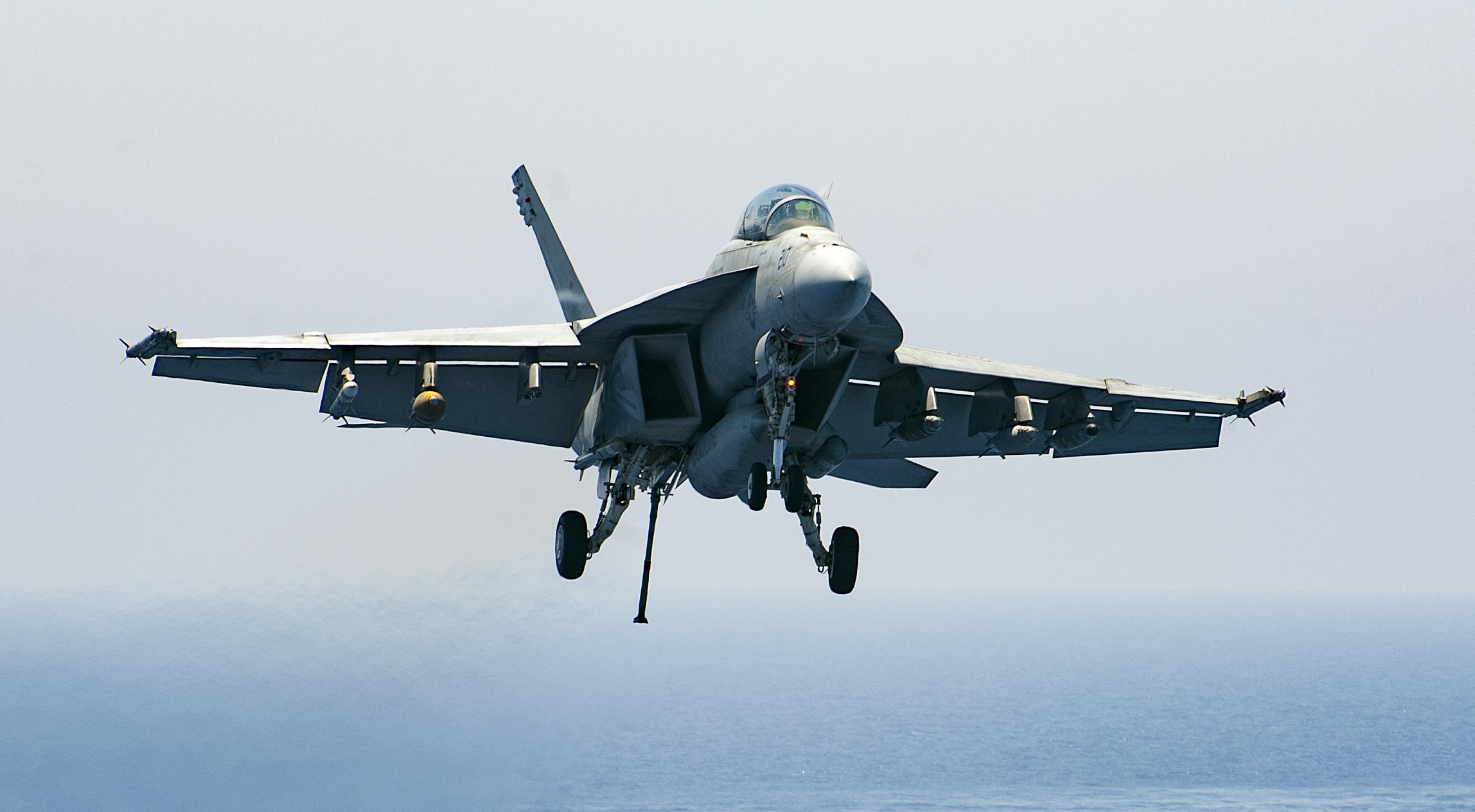 Blacklions Super Hornet Fighter Jet