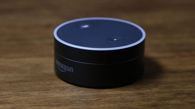 Amazon Echo Dot_466647