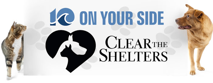 clear-the-shelters-700x274 (1)_1531861711303.jpg.jpg