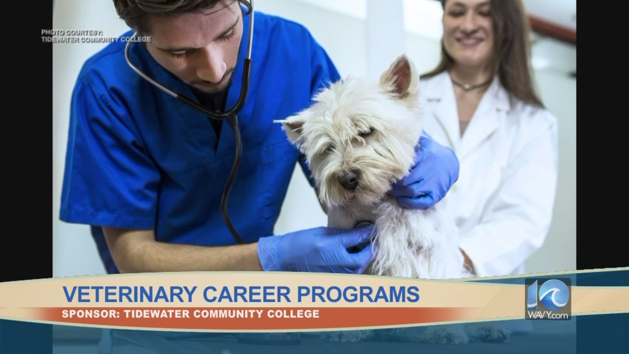 Veterinary_Career_Programs_0_20180817151032