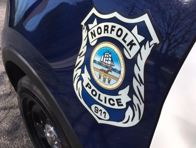 Norfolk Police Generic New Patrol Cars 3  Walter Hildebrand_1549476007764.jpg.jpg