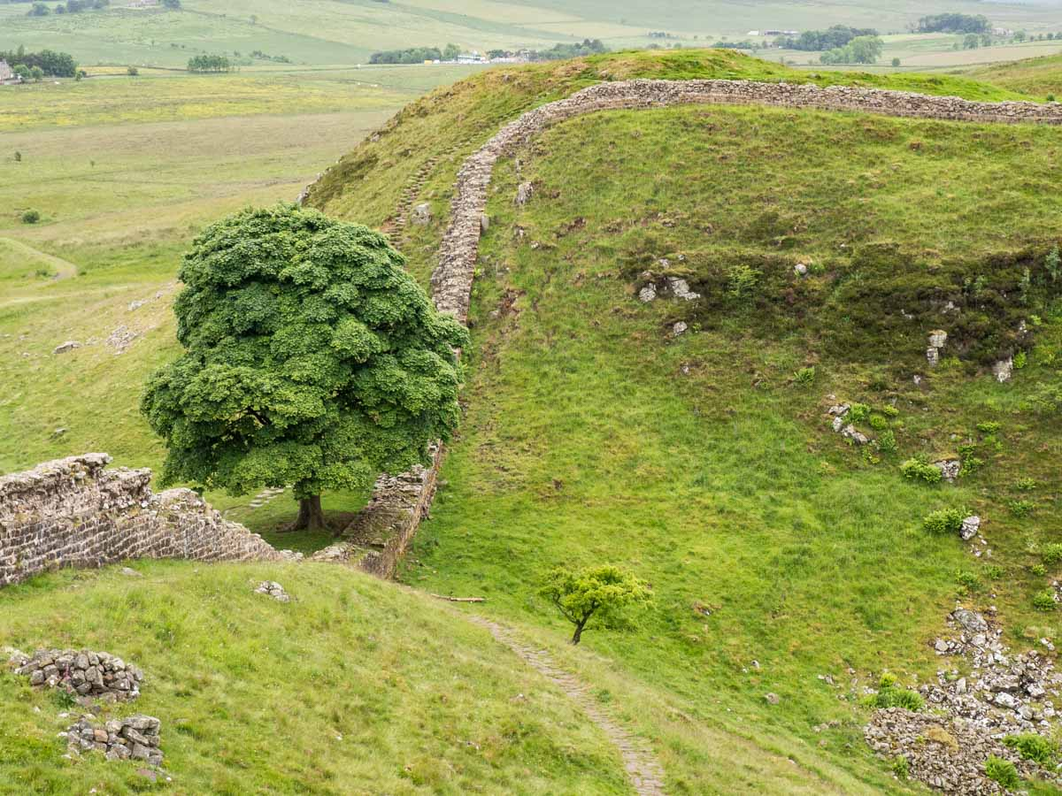 Hadrian's Wall Path Sycamore Gap