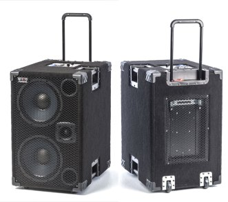 Wayne Jones AUDIO 1000 Watt 2x10 Powered Bass Cabinet