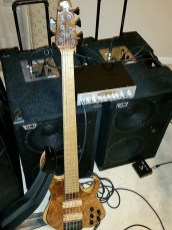 David-Dyson-bass-player-rig