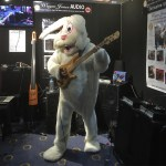 Funky Bunny with a Fodera Monach 5 Deluxe bass guitar