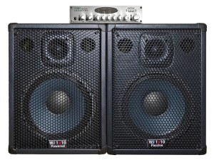 Wayne Jones Audio - 1000 Watt 1x10 Stereo/Mono Bass Cabinets with WJBP pre-amp