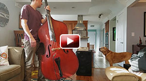 Upright bass with Wayne Jones Audio rig review: WJ 2×10 1000 Watt Powered Cab & WJBPII Twin Channel Bass Pre-Amp