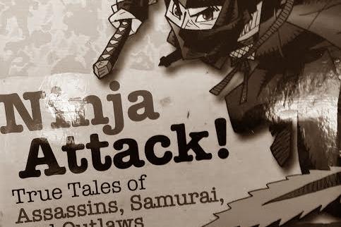 Ninja Attack review