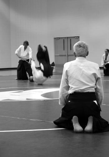 Aikido Observation