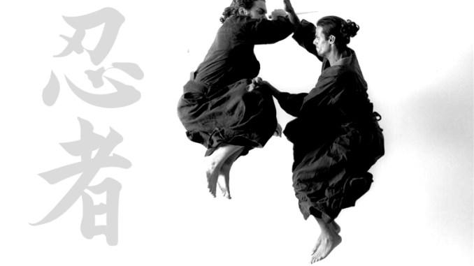 How Did Modern Ninjutsu Ninja Martial Art Schools Evolve Interview