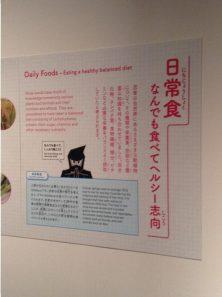 Daily Foods - Eating a healthy balanced diet - Ninja