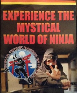 Experience the Mystical World of Ninja