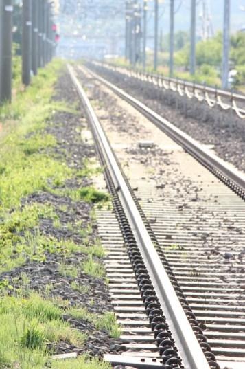 Shinkansen - Japan Bullet Train