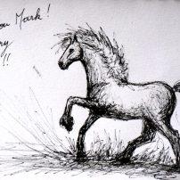 dessin-merci-mark-cheval