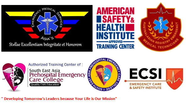 AEMS' Partners in Quality EMS Education