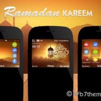 Ramadan Kareem theme s40 320x240 Asha 302