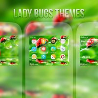 Lady Bugs theme for Nokia s40 320x240 eg: C3-00 X2-01