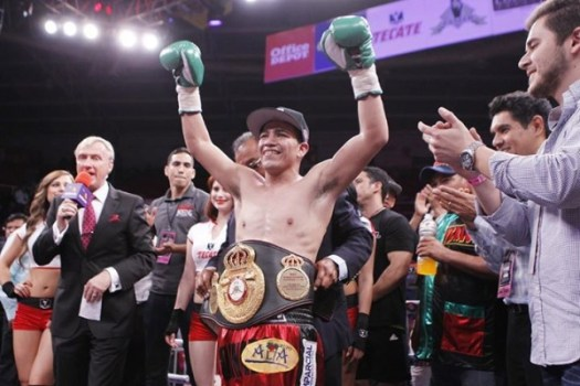 Sanchez Makes Statement for Kono Fight With Rosas TKO