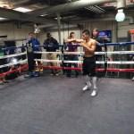 Cuellar - Darchinyan open workout