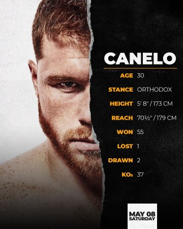 Canelo: the big name in the boxing world