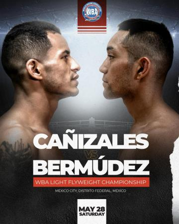 Cañizales and Bermudez will fight this Friday for the WBA world belt