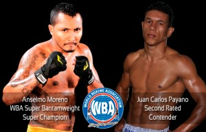 AMB llama a subasta Moreno vs Payano