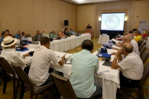 Regional reports approved in the first working session of the WBA Directorate