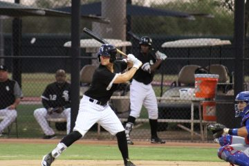 Chicago White Sox Prospects