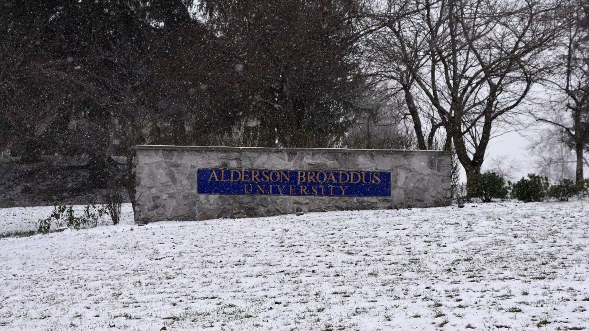 Alderson Broaddus University Ranking.jpg