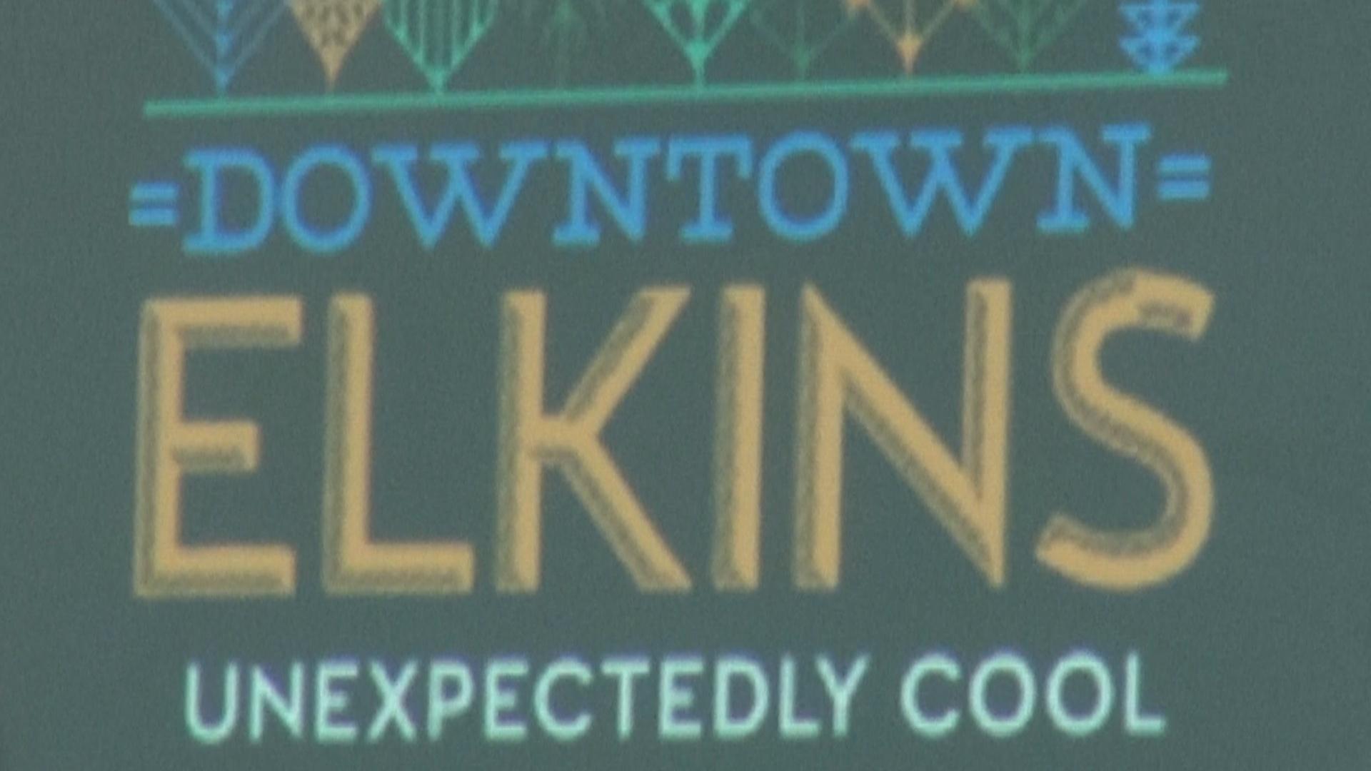 Elkins Branding Presentation.jpg