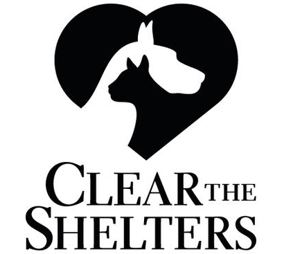 clear the shelters_1534265627053.jpg.jpg