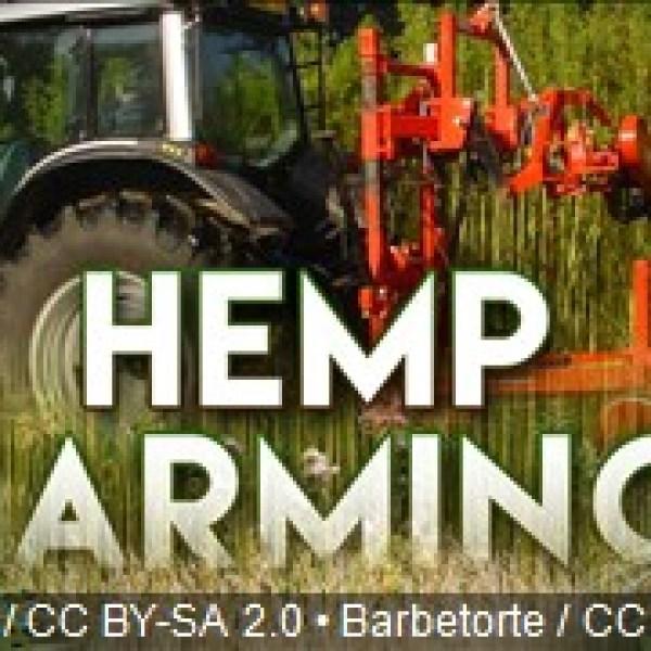 Hemp Farm_1551981024366.jpg.jpg