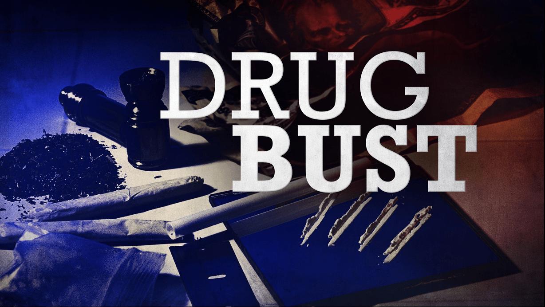 drug bust_1520101842282.PNG.jpg